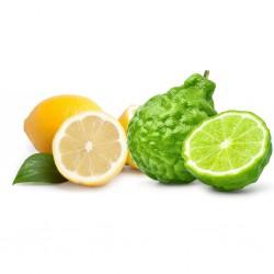 Lemon FO