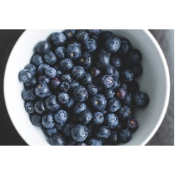 Blueberry Fo